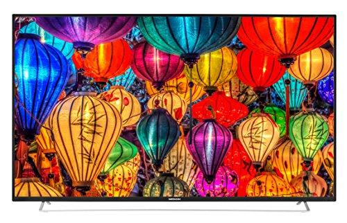 MEDION S16506 163,8 cm (65 Zoll Full HD) Fernseher (Triple Tuner, DVB-T2 HD, HDMI, CI+, USB, Mediaplayer, Wandhalterung)