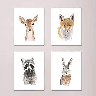 Woodland Nursery Art - Print Set of 4 Prints, Baby Animal Print Set, Woodland Baby Room Decor - Deer, Fox, Raccoon, and Rabbit - Selection of Alternate Animals and Sizes available