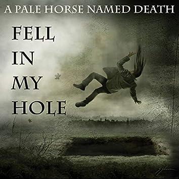 Fell in My Hole
