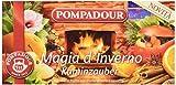 Pompadour Infusione per Bevande Calde, Magia d'Inverno - 20 filtri - [confezione da 3]