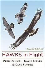 Hawks in Flight: Second Edition