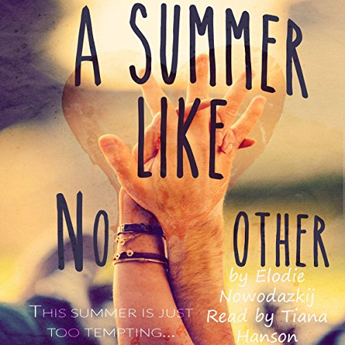 A Summer Like No Other audiobook cover art