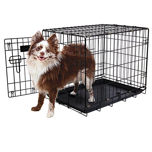 "Aspen Pet Single-Door Home Training Crate, 24""W x 17""D x 20"" AmazonPets Basic Crates Dog from Kennels products Selection Selections Supplies Top"