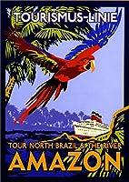 ERZAN知育玩具200ピースパズルブラジルアマゾン川オーシャンライナービンテージオウム旅行家の装飾