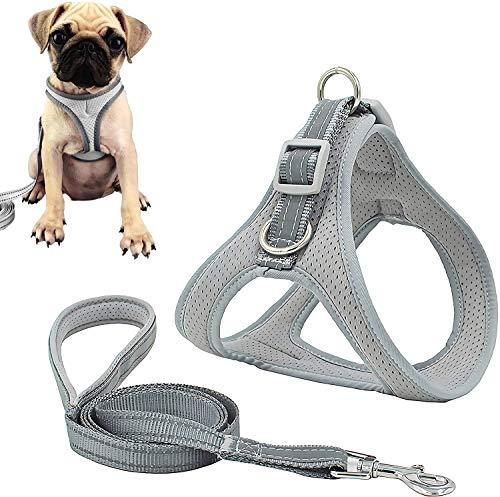NIUBICLAS Juego de arnés y correa para perro pequeño y mediano, sin tirar, ajustable de malla suave Chihuahua arnés de pecho para cachorro, chaleco reflectante de seguridad para caminar al aire libre