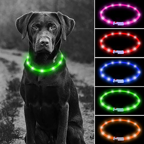 Higo LED Dog Lighted Collar, USB Rechargeable Glowing Dog Safety Collar, Lightweight Silicone Dog Necklace for Your Small Medium Large Dogs (Green)