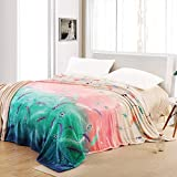 YJJSL Manta de Franela Manta Espesar Invierno Suave Cómodo Cálido Oficina Siesta Manta Manta Cubierta (Size : 2000cmX230cm)