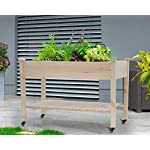 Raised garden bed with legs 48x23x32 inch wheels elevated garden bed wood planter box kit for vegetable flower outdoor… 13 ✔【high quality materials】:the raised garden bed is made of no paint, garden bed use non-toxic fir wood, which is known for its strength and dimensional stability as well as its natural resistance to rot and pests. The 0. 6'' thick solid wood boards are only sanded to prevent any undesired injury caused by wood splinters. ✔【nature gardening buddy】:the garden bed use natural wood color makes your garden and greenhouse more original and healthy, and its natural wood grain on the boards bring a rustic and natural style to your garden. ✔【ergonomic design】:the garden bed built with a set of locking wheels to move the planter from place to place. The wood garden bed user-friendly design,the height about garden raise bed is 32. 3 inch, the people who have a backache or knee pain can easily manage plants,you don't need to bend down or keep down.