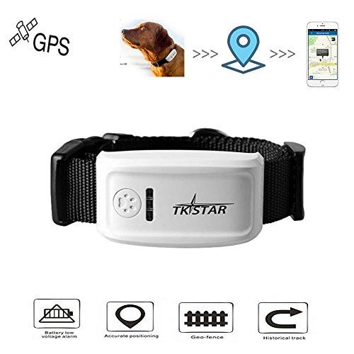 GPS Tracker, Hangang Localizzatore GPS Collare per Cani Perso in Tempo Reale con applicazione gratuita Lunga attesa 300h (TK909)