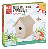 Toysmith Beetle & Bee Garden Build and Paint A Birdie B&B DIY Wood Bird House Craft Kit for Kids