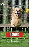 ADIESTRAMIENTO CANINO: APRENDER Y EDUCAR A TU PERRO