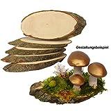 Rindenscheiben 5 Stück 21 - 23 cm lang zum Beschriften tolles Naturprodukt Naturholzscheiben Baumscheiben Erle groß oval auf beiden Seiten geschliffen für Deko & Basteln ideal zu...