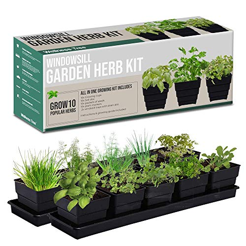 Window Garden Kit 10 Culinary Herbs - Indoor Organic Herb Growing Kit...