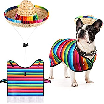 Best mexican dog costumes Reviews