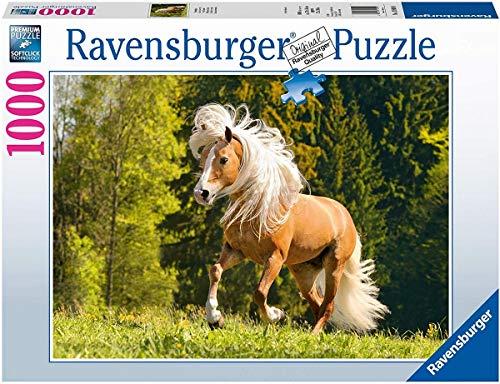 Ravensburger 15009 juguete para el aprendizaje , color/modelo surtido
