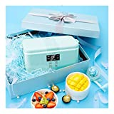 Hecho en casa yogur Máquina Mini compartida de vino de arroz Pequeño automática Fermentación máquina de gran capacidad