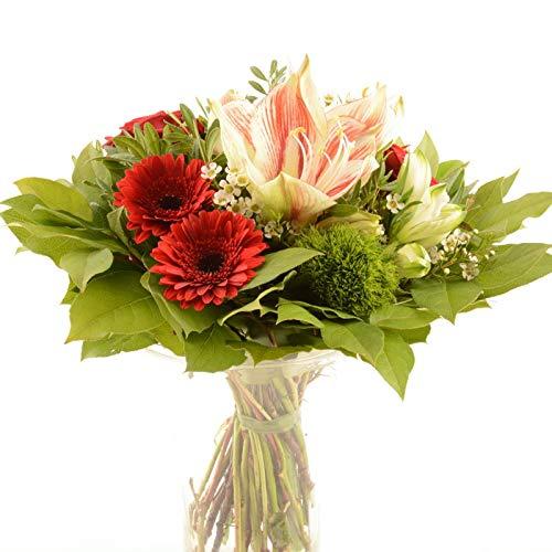 """Blumenversand passend zur Jahreszeit - Blumenstrauß""""Super Star"""" mit weiß roter Amaryllis - Gratis Grußkarte - Deutschlandweit versenden"""