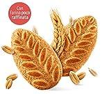 Zoom IMG-2 misura dolcesenza biscotti ai cereali