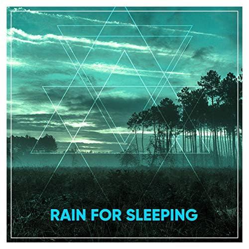 Rain for Deep Sleep, Rainfall & The Rain Library
