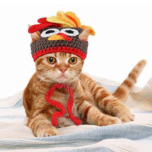 Legendog Cat Costume Turkey Hat Halloween Thanksgiving Party Handmade...