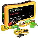 5108ltKxgWL. SL160  - Car Battery Charger Home Depot