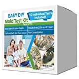 Best Mold Test Kits - Evviva Sciences Mold Test Kit for Home Review
