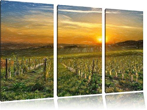 Wijngaard in Bergerac FrankrijkFoto Canvas 3 deel   Maat: 120x80 cm   Wanddecoraties   Kunstdruk   Volledig gemonteerd