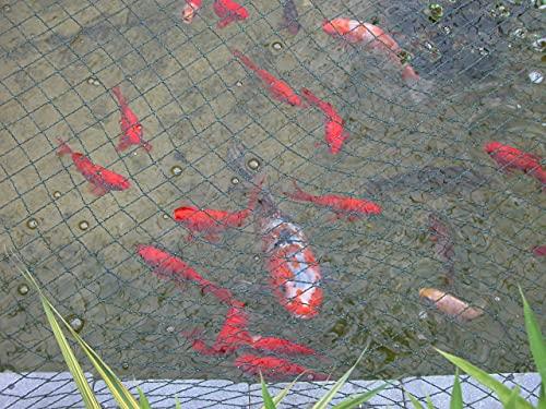 Tech-Garden - 6 m x 3 m Teichabdecknetz stark durchscheinend grün Garten Fischteichnetz Vogelfreundliches Netz zum Schutz von Goldfischen und Koi-Karpfen – Anti-Blatt- und Sicherheitsbarriere.