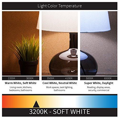Sunlite 7CFF/25/12PK Flame Tip 7.5W Incandescent Petite Chandelier Light Bulb, Candelabra (E12) Base, Frosted Bulb (12 Pack)