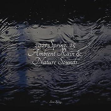 2021 Spring: 25 Ambient Rain & Nature Sounds