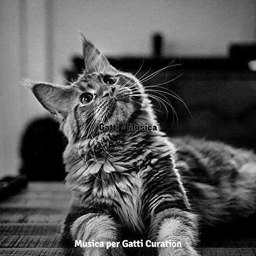Musica per Gatti Curation