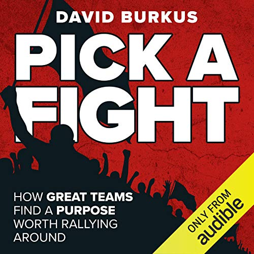 Pick a Fight audiobook cover art