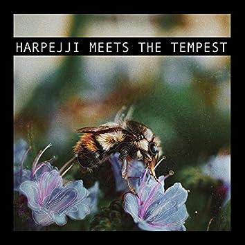 I Am Lance Vol. 1, Harpejji Meets the Tempest