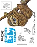 Endangered Baby Animals: A Special Edition Coloring Book (Animal Sketches)