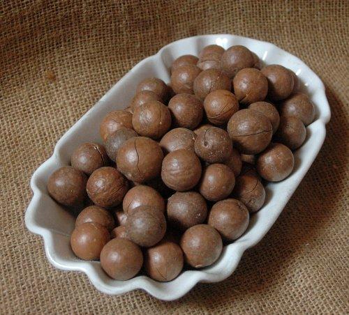 Naturix24 – Macadamianüsse mit Schale – 1 Kg Beutel