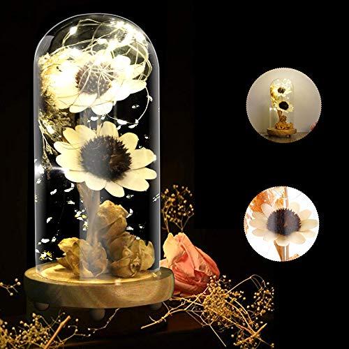 KIPIDA Kit de regalo de rosa, de La Bella y la Bestia, con cúpula de cristal artificial, lámpara LED para el día de la madre, mujer, novia, aniversario, boda, regalo de cumpleaños