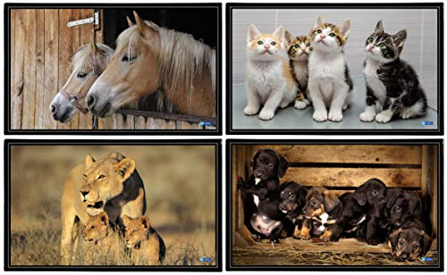 Viquel 138287-06 bureau-onderlegger dieren puppen/katjes/paarden/gepards