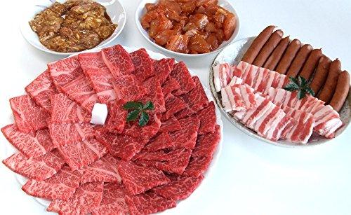 【肉のひぐち】飛騨牛 ・ 国産 豚肉 ・ 国産 若鶏肉 ・ 国産 豚 ホルモン ・ 明宝フランク バーベキューセット 総重量 2.1kg 8~10人分 牛肉 豚肉 ホルモン フランク セット BBQ キャンプ おうち焼肉 などに 冷凍でお届け致します…