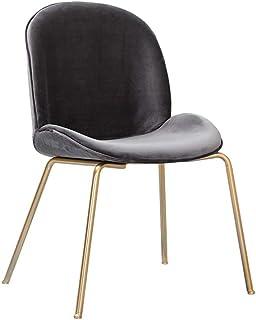 YUTRD ZCJUX Silla de Comedor con diseño de Hierro de Estilo nórdico sillón de uñas Silla de Maquillaje sofá Moderno y S...