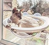 Capsula Spaziale Amaca Gatto, persico Finestra Gatto, Sicuro e Solido, Facile da installare, Lecca Lecca Catnip Naturale Gratuito