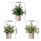 Zoom IMG-1 piante artificiali in vaso 3