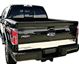 Made in USA! Compatible with 2004-2014 Ford F150 Styleside Tailgate Plain Molding Trim Accent 6 1/4'' Wide 1pc