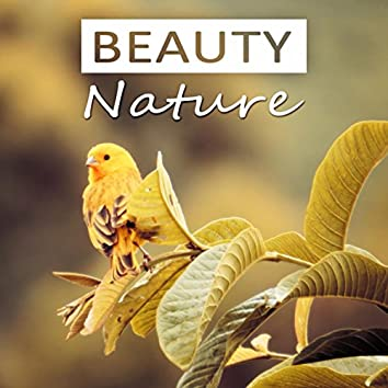 Beauty Nature - Relaxation, Well Being, Liquid Songs, Nature Calming Music, Sounds of Nature, Spa Music, Massage