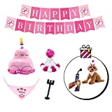 PYOGO Birthday Bandana Hat - Happy Party Supplies - Cake Toy - Bonus Memory Selfie Stick - Dog Mom Dad Gift Basket for Small Medium Large Dog Cat Pet Puppy Girl Boy (Pink)