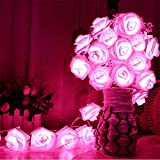 Avanti 20 Led Battery Operated String Romantic Flower Rose Fairy Light Lamp Outdoor for Valentine's Day, Wedding, Room, Garden, Christmas, Patio, Festival Party Decor (Hot Pink)