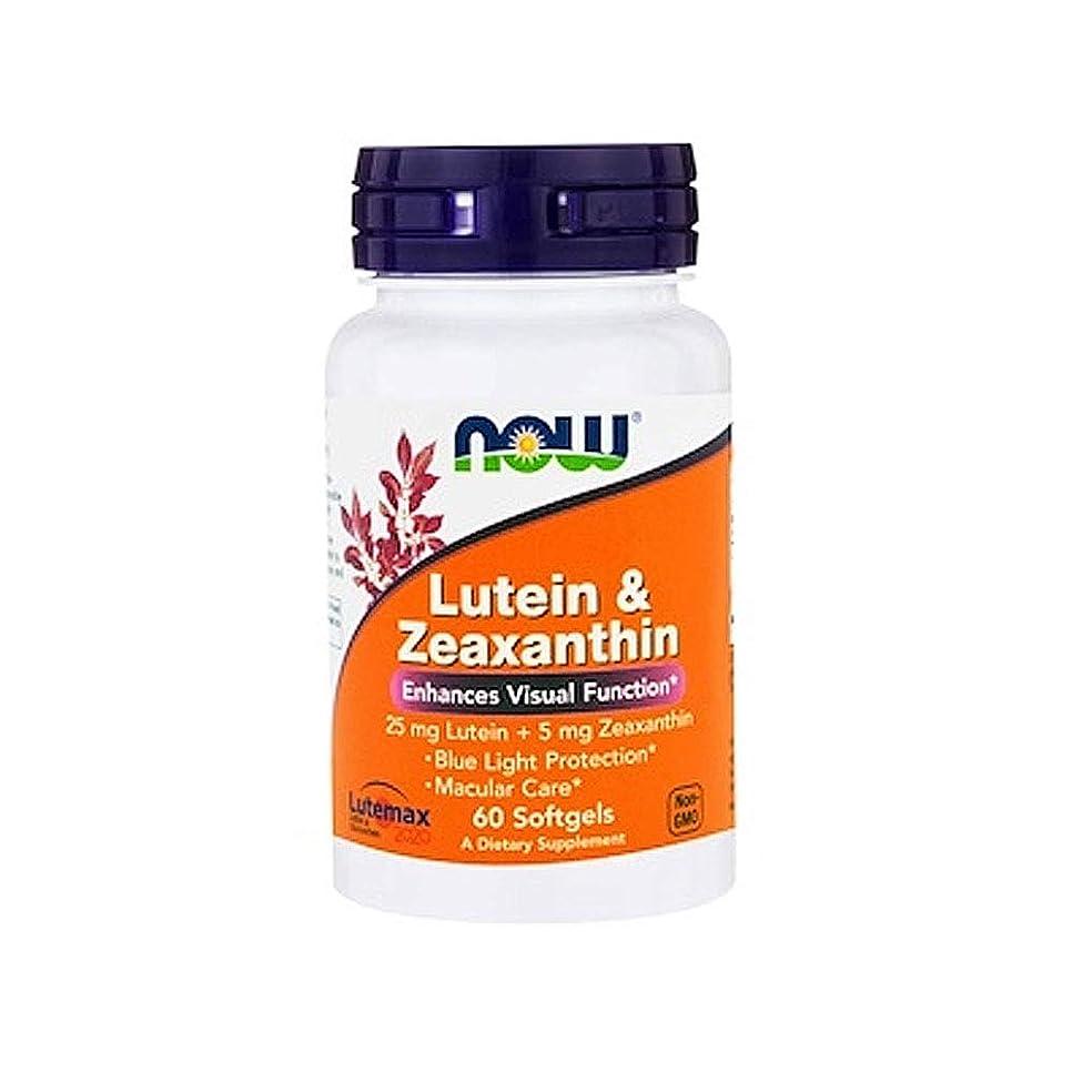 バクテリア専門知識アーサーコナンドイルルテイン ゼアキサンチン 60粒