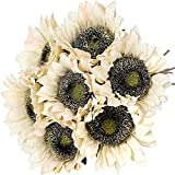 YYHMKB Girasoles Vintage Flores Artificiales 7 Piezas Ramo de Girasoles de Seda Sintética Falso Real Touch Tallos Largos Floral para Decoración de Banquete de Boda Blanco