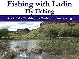 Rock Lake Washington Outlet Stream: Spring