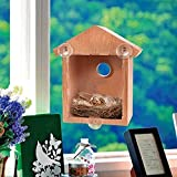 Casita Pajaros exterior Pájaro de madera nidos de succión al aire libre Visible Pájaro Home Garden Window Birdhouse Dispensador Alimento Casa Herramientas de alimentación de aves Comedero Pajaros Exte