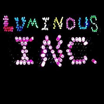 Luminous Inc.